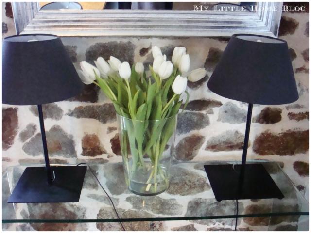 Tulipes 01.03.13 1