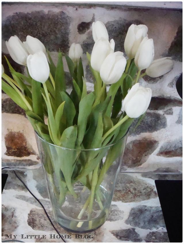 Tulipes 01.03.13 2
